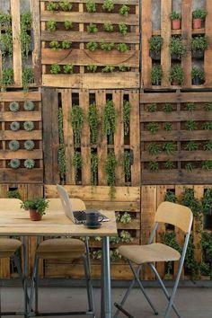 Vertikaler Garten aus Holzpaletten mit Sukkulenten