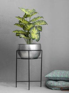 Living Room Plants Decor, House Plants Decor, Plant Decor, Home Plants, Indoor Flower Pots, Indoor Planters, Hanging Planters, Planter Pots, Silver Plant