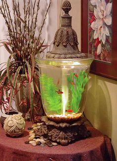 Antique Fish Aquarium
