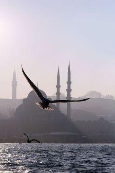 "seeyouturkey: ""Feel the city: istanbul """