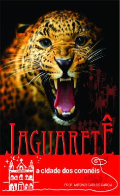 BLOG PROFGARCIA: Estou no VI prêmio de literatura com meu livro Jag...