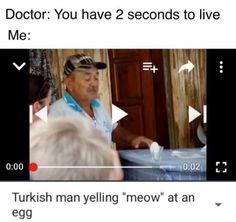 Funny Memes To Kick start The Day Stupid Memes, Stupid Funny, Dankest Memes, Funny Jokes, Lol, Mega Pokemon, Quality Memes, Fresh Memes, Funny Pins