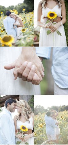 So beautiful - this would be the perfect engagement pictures for my little sister, she is OBSESSED with sunflowers!