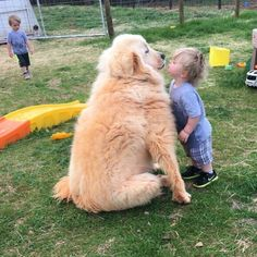 My best friends dog and his younger cousin http://ift.tt/2dw6SAf