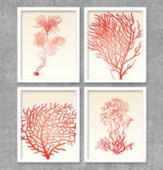 Botanical Coral Digital Printable Wall Art Print by vnprintableart, $10.00