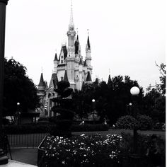 I know I was there just this summer, but I want to go back to Disney