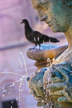 Fontana Di Nettuno, Bologna - Italy