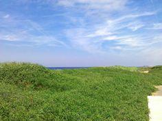 L'Aboiteau Beach Dunes Cap Pele NB
