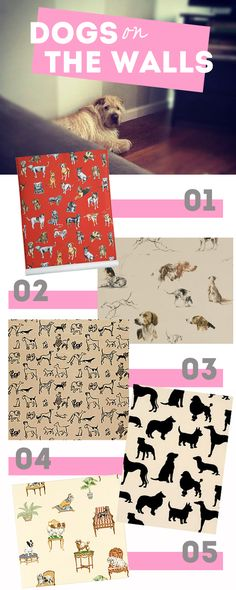 HOUSE OF HARVEY - http://www.houseofharvey.com/products-dog-wallpaper/