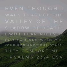 Faith Moves Mountains, Move Mountains, Psalm 23, Pray, Believe, Death, Sayings, Lyrics, Quotations