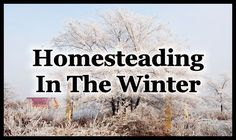 Perhaps when one thinks of homesteading they have images in their mind of digging in the garden on a warm summer day or perhaps putting in fence posts while sweat runs down your brow and no doubt t…