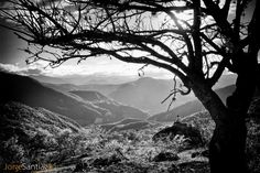 La Sierra desde Guelatao