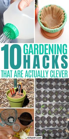 10 Genius Garden Hacks You Need To Try Today 10 Clever gardening hacks you wish you knew sooner! Watermelon Hacks, How To Grow Watermelon, Garden Tool Storage, Garden Tools, Old Milk Bottles, Organic Fertilizer, Useful Life Hacks, Drying Herbs, Fun To Be One