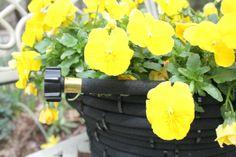 Crafts a la mode : Turn an Old Garden Hose Into a Flower Pot