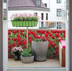 Porch Privacy, Watering Cans, Apartment Balconies, Balcony Ideas, Winter Garden, Feng Shui, Planters, Home And Garden, Exterior