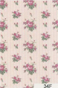 Rose Stripe 34F