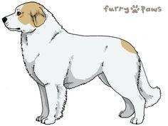 Furry Paws // IPnP OFRH Kip's Mojo [lala 4HH GFGG]'s Kennel