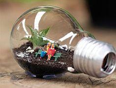 Lâmpada usada: Como fazer jardins dentro de lâmpadasNOCTULA Channel | … o que…