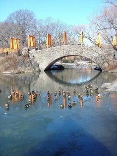 Christo Gates Central Park Installation