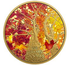 Maple Canopy series of pure gold coins has been supplemented with the next coin depicting the beauty of Canadian nature. Maple Leaf, Sell Old Coins, Numismatic Coins, Coin Buyers, Canadian Nature, Wounded Warrior Project, Gold And Silver Coins, Mint Gold, Commemorative Coins