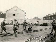 Guardias de las SS a punto de ser fusilados en el campo de concentracion de DACHAU despues de la liberacion.