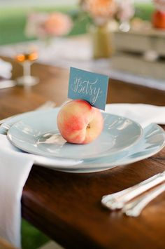 peach seating card holders