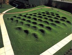 Maya Lin, Wave Field.
