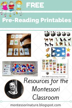 Free Pre-Reading Printables via Montessori Nature Montessori Preschool, Montessori Education, Montessori Materials, Preschool Classroom, Preschool Activities, Dinosaur Activities, Montessori Elementary, Maria Montessori, Kindergarten