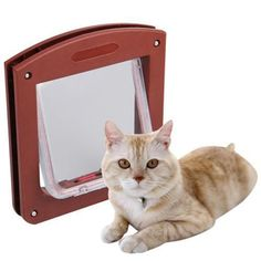 Meidus more lovely Brush Edge Plastic 4 Way Cat Dog Small cat Locking Door Flap Coffee ** Quickly view this special cat product, click the image : Cat Doors, Steps, Nets and Perches