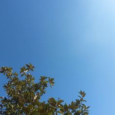 Parti déjeuner #Niort #cielfie #nofilter #instasky #instablue #blue #bleu #ciel #lcdj #lecieldujour #sky #skyporn