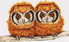 Two cute little owls photo stitch free embroidery design - Photo stitch embroidery designs - Machine embroidery community
