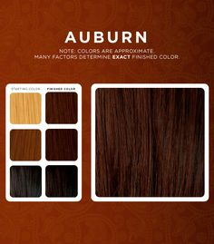 Our Henna-Based Hair Dyes Are Your Best Choice: • Organically grown &…
