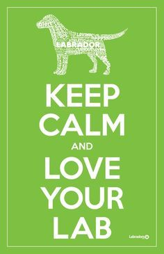 Keep calm and love your Lab.