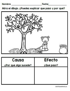 Causa y efecto actividades para primero y segundo. Cause and effect activities, worksheets, graphic organizers and writing sheets in Spanish for first and second grade Spanish immersion, bilingual and dual language students. Includes ideas for anchor char