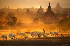 A Collection of Stunning Photos of Myanmar | Design & Photography - BabaMail
