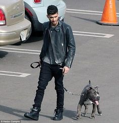 Zayn and his dog Harley!<<< WHOA WHEN DID THIS HAPPEN
