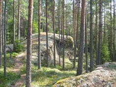 Isojärven kansallispuistoa ilmentävät kalliot, jyrkänteet ja järvet sekä majavien patotyömaat. Isojärvi National Park is a small wilderness-like area, where forest and lake landscapes alternate. There are long narrow lakes and rift valleys, formed in faults in the bedrock, which makes the terrain difficult at some places.  Kuva/Photo: Metsähallitus / Maija Mikkola    www.luontoon.fi/isojarvi  http://www.facebook.com/MatkaMaalle  http://www.keskisuomi.net/  http://www.centralfinland.net/
