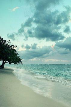 How I wish I was here...