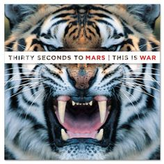 30STM This is war