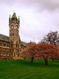 I used to walk by this everyday for 2 years - Clock Tower, Otago University New Zealand Cruises, Dunedin New Zealand, Unique Clocks, The Beautiful Country, Colleges, What Is Like, Towers, Amazing Places, Big Ben