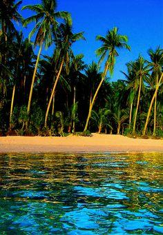 Paradise found...