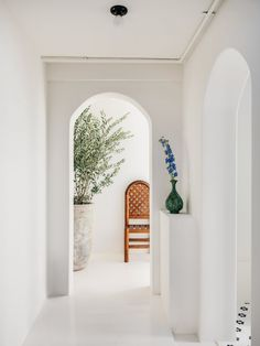 Curved archways lead into the treatment rooms which are also painted white and flooded with natural light from a row of windows. The rooms are outfitted with a wood chair for patients, wooden stools and potted plants. Red Plants, Potted Plants, San Francisco Design, Greek Design, Greek House, Best Indoor Plants, Spa Rooms, Treatment Rooms, Step Inside