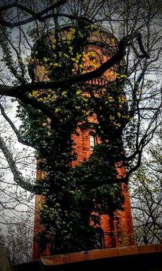 Wasser Turm / Water Tower