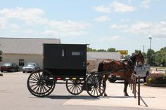 Illinois Amish Buggy.