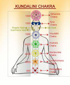 Kundalini Yoga Chakra system