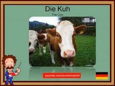 LEARNING GERMAN: FARM ANIMALS / DEUTSCH LERNEN: AUF DEM BAUERNHOF