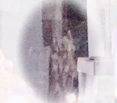 41 Best Ghosts images in 2019 | Ghost photos, Ghost pics, Ghost pictures