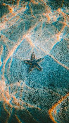 Una estrella en el basto mar