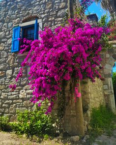 The focal point is bright magenta flowers that pop against the grey stone building. Bougainvillea, Beautiful Flowers, Beautiful Places, Beautiful Pictures, Magenta Flowers, Hacienda Style, Yard Design, Belleza Natural, Photomontage