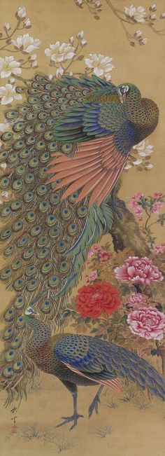 Peony and Peacock by Okamoto Shuki Japanese hanging scroll painting, kakejiku. Japanese Bird, Japanese Flowers, Japanese Prints, Japanese Wall Art, Peacock Painting, Peacock Art, Chinese Painting, Chinese Art, Peacock Tattoo